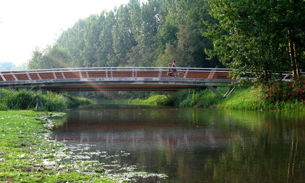 Bridges over the Dommel River