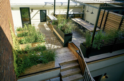 Terrasse VF: Four Levels of Spatial Variation