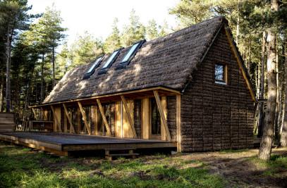 Modern Seaweed House