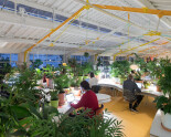 Super Green Offices