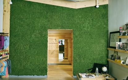 Commercial reindeer lichen mosswall
