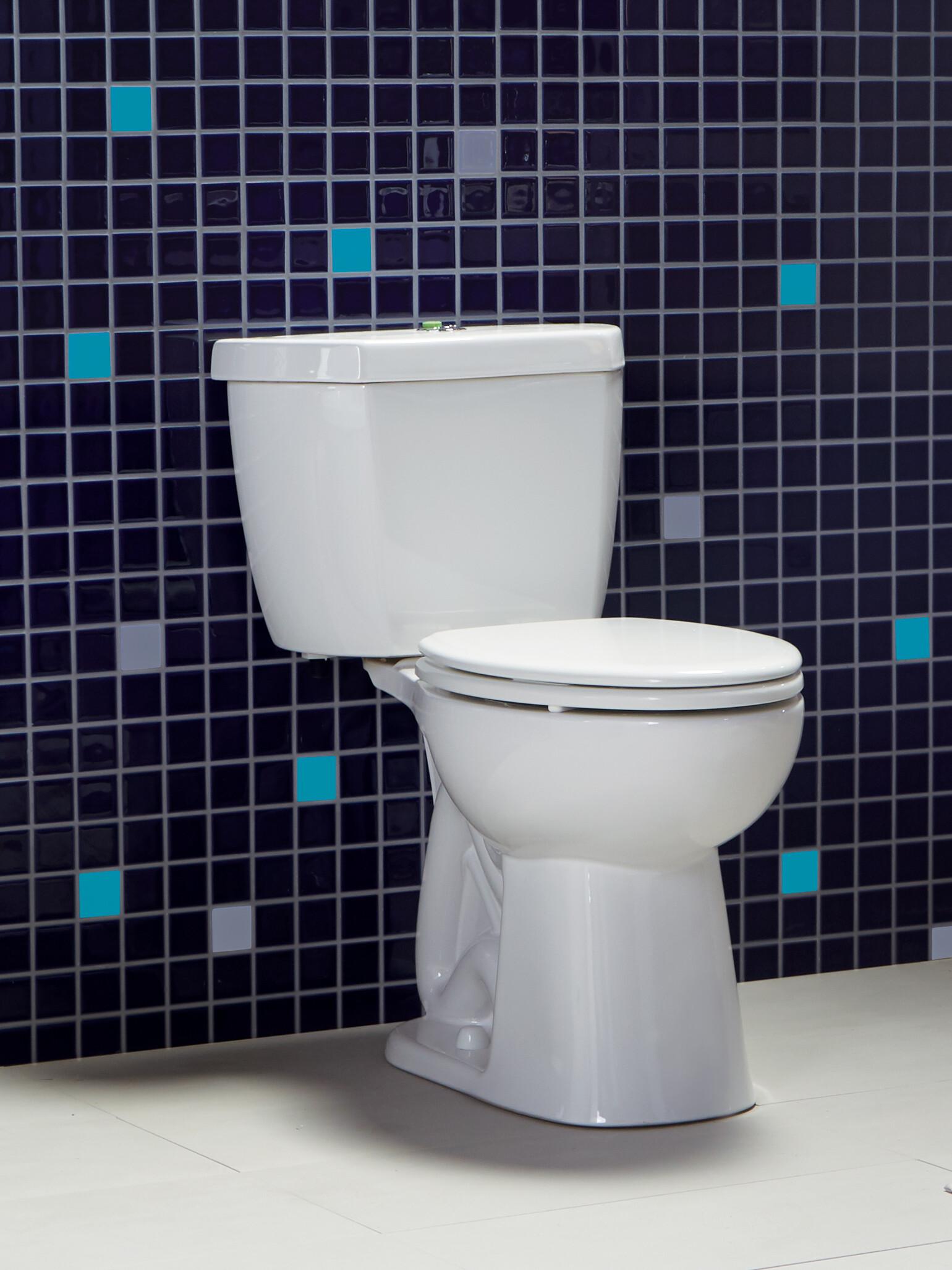 Original Stealth Dual Flush toilet