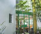 Jardin frontal (Frontal Garden)