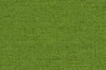 Varese Grass