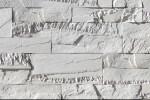 Sawtooth Ledge / Silver Ash
