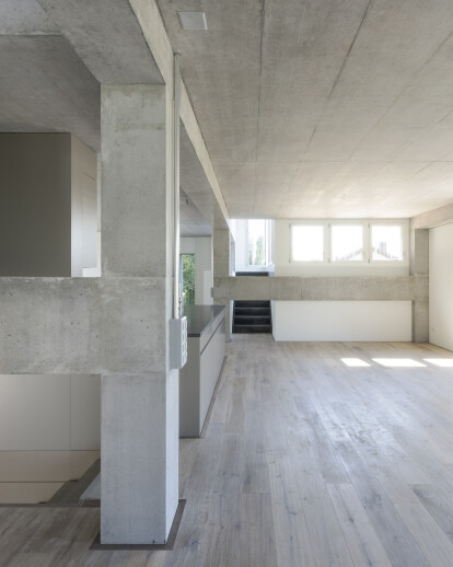 House for an artist