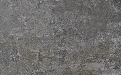 Orix - Detail