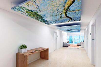 CoArt Acoustic Ceiling Cloud