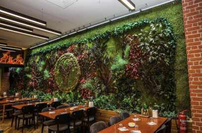 Mumyalanmis bitki ve yosun
