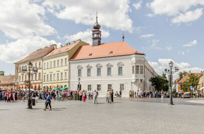 Reconstruction of Historic Town Hall of Buda