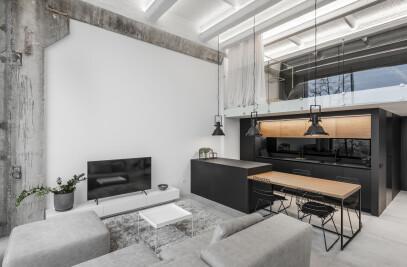 Minimalistic industrial loft