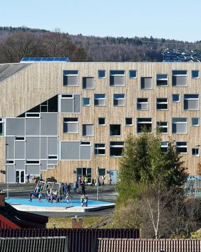 Mestfjellet School