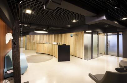 Stratulat Albulescu Offices