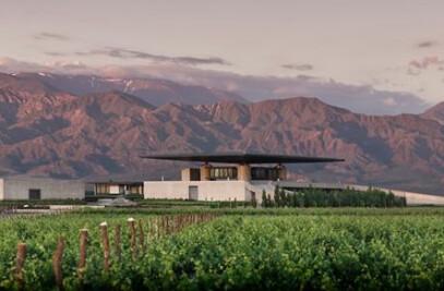 Alfa Crux Winery   ex O. Fournier