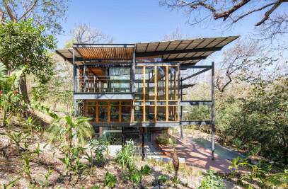 The Jungle Frame House