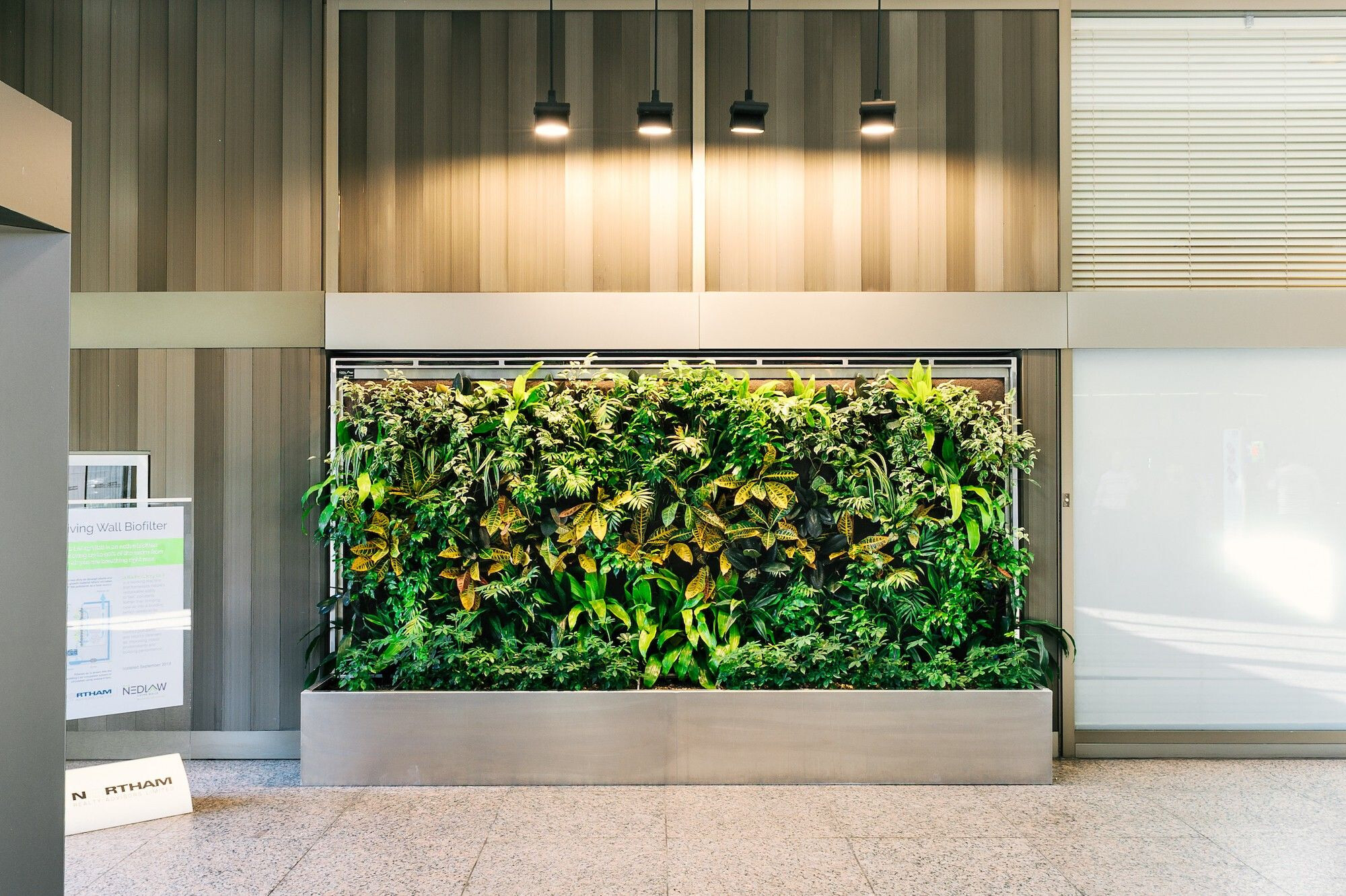 Office Living Wall Biofilters