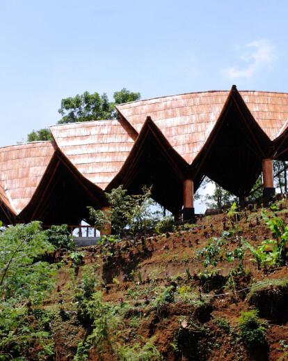 Bamboo Amphitheater