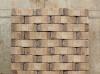 ballaena tergo, impression technique