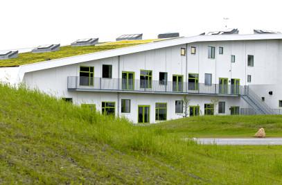 Tjørring School
