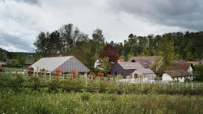 Gesamtprojekt Wohnhaus auf 4 Stützenpaaren