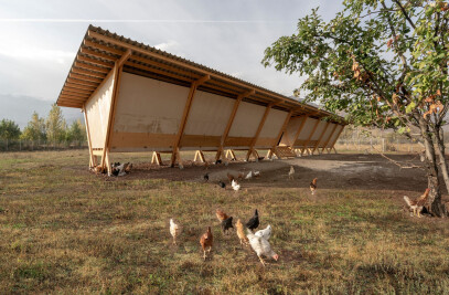 House of Chickens