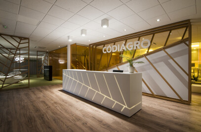 Codiagro Offices