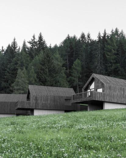 fan, forest houses