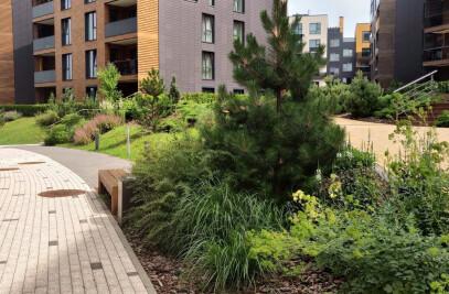 Apartment block area landscape architecture
