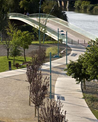 Intervention on the Ebro riverbanks