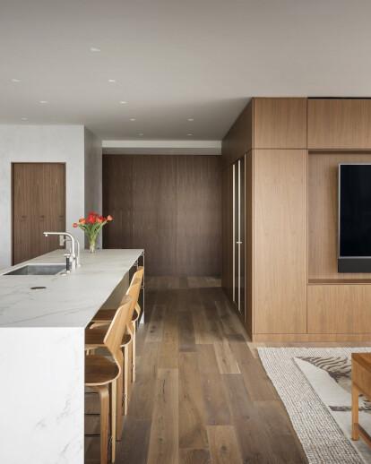Seattle Condominium Renovation