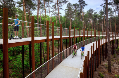 Cycling through the trees