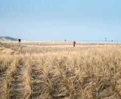 Katwijk Coastal Defence