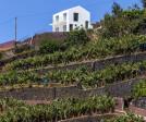 House in Jangão, Ponta do Sol, Madeira Island