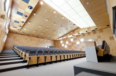 Tiles & Panels - Wood Walls Interior