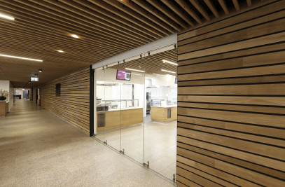 Linear - Wood Walls Interior