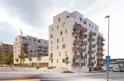 Housing Waltrovka