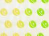 Citrus – Lemon Lime Scented