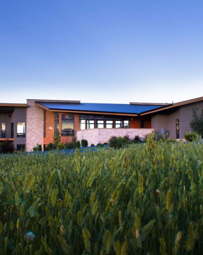 Mallard Creek Modern Home