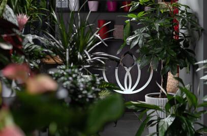 La Floreale Bacoli