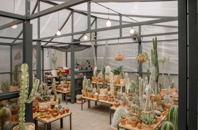 New York Greenhouse