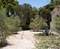 Alter Residence