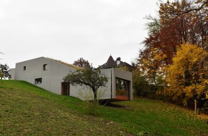 lizard house