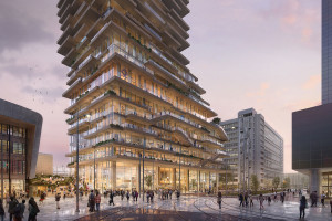 A timber 'Tree House' tower for Rotterdam