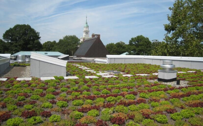 Extensive Garden Roof Assembly Da American Hydrotech Archello