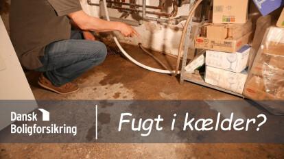 Dansk Boligforsikring på besøg - Fugt i en kælder?