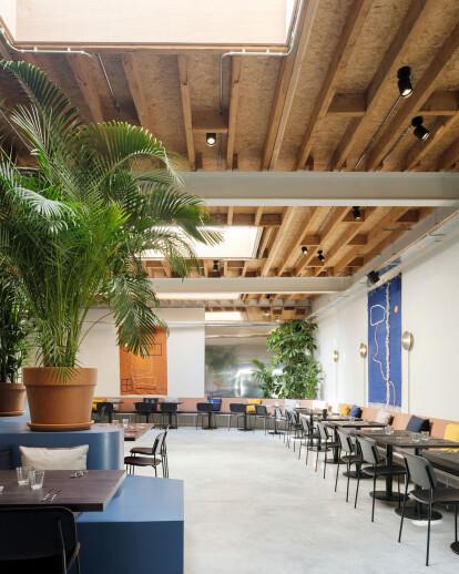 AMOR – a restaurant for De Roma