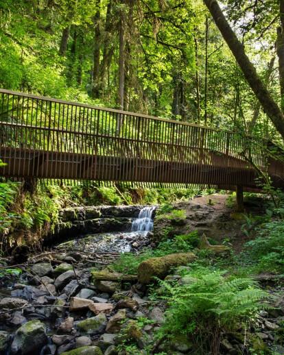 Forest Park Bridges