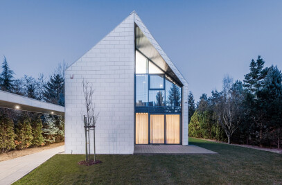 The Cutting-Edge House