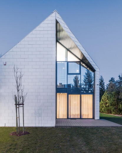 The Cutting-Edge House