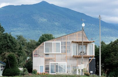Asymmetric House
